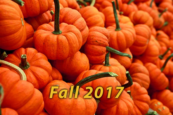 SON-Fall-17-600x400-1