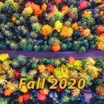 SON-Fall-2020