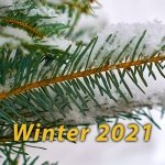 SON-Winter-2021